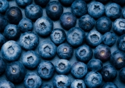 180310_blueberries_044-Edit.jpg