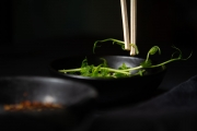 181129_sunflower sprouts_023.jpg