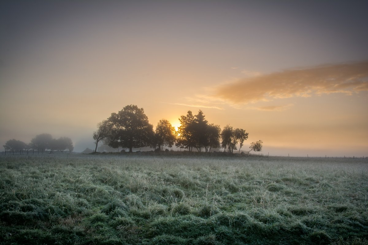 Autumn sunrise on Färingsö
